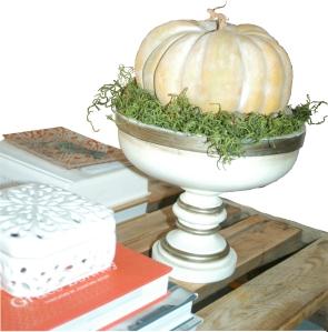 Pumpkin on moss