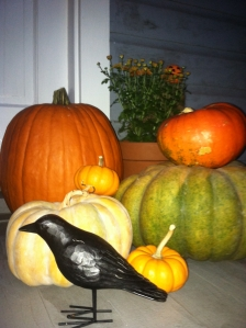 Pempkins and Gourds Galore